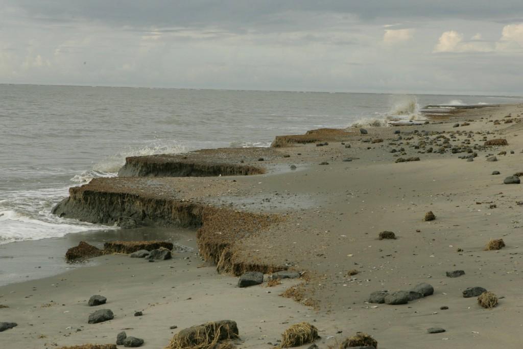 Beach_erosion_(8427148836)