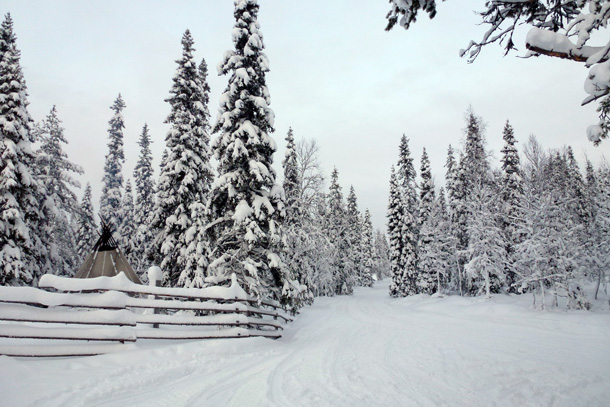 Oulanka National Park (purplespace / Flickr)