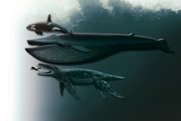 pliosaur funkei