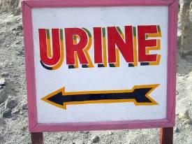 urine sign